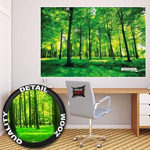 Poster De Foret - Affiche arbres - mur decoration paysage naturel