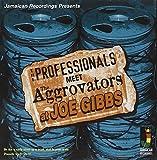 Meet the Aggrovators at Joe Gibbs -