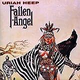 Fallen Angel (180g) [Vinyl LP]