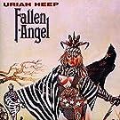 Fallen Angel [VINYL]