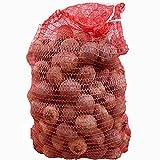 Markenlos Rote Bete Knollen 10kg