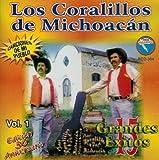 Los Coralillos De Michoacan (15 Grandes Exitos Vol. 1) Rdc-304 by Los Coralillos De Michoacan (2002-08-03)