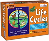 Creative Educational Aids 0993 Life Cycl...