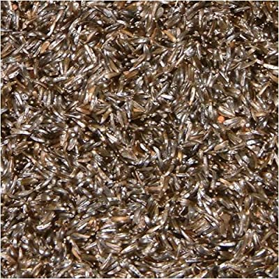 Niger Seed For Bird Food - 1kg Bag by JUST GREEN