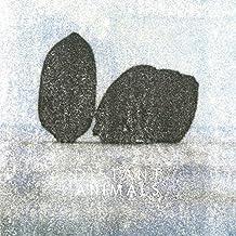 Lines [Vinyl LP]