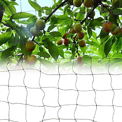 Pinkdose® 5X20M: Viscose Silk Anti Birds Netting Game Golf Course Mesh Net Poultry Aviary Fish Net Garden Orchard Protect Pest Control 3 Sizes