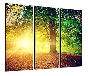 Topseller wandbilder green light 3x40x80 cm gesamt 130x80 cm wald gr n weg - Amazon wandbilder ...