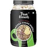 True Elements Muesli No Added Sugar 1kg - Fibre Rich Muesli Sugar Free for Breakfast, Healthy Food