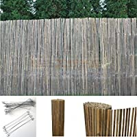 Suchergebnis Auf Amazon De Fur Bambus Gartensichtschutz
