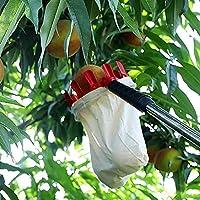 Ablerfly Selector de Frutas Herramientas de jardinería Selecciones de jardinería Recolección de Frutas Asistente de jardín (Alrededor de 13 cm de diámetro Amazing