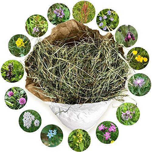 Jumbogras® Bioheu: Qualitäts-Kleintier-Futter, Heu für Kaninchen/Hasen, Nager. Handgestopft aus der größten Bio-Heu Region Europas in Österreich