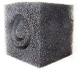 Pre Filtro in Schiuma per Stagno Pompe 15,2cm X6 X6