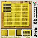 ESCLUDI REGINA IN PLASTICA 43x50 ProfessionalBee