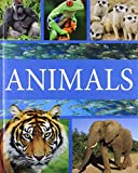 Adventure into the animal kingdom and meet some weird and wonderful creatures, from bugs to bats, crocodiles to chimpanzees and elephants to eels. Do you want to know. Where do insects live? How big is a whale? What is the biggest cat? Crammed full o...