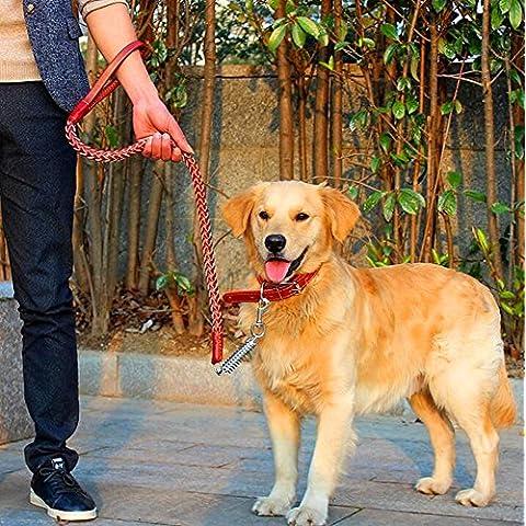 Saflyse MR.Dog guinzaglio in cuoio per cani grandi marrone