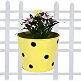 TrustBasket Single Pot Railing Planter - Yellow with Dots