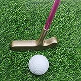 crestgolf 29pulgadas acero inoxidable dos forma niños Diana Putter, palos de golf junior, Age9–12(rosa) con oro cabeza/mango de color azul con plata Cabeza para tus hijos)