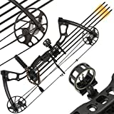 Best Compound Bows - Anglo Arms 15-70LB Black 'Chikara' Compound Cam Bow Review