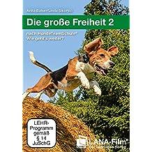 Die große Freiheit 2: nach HundeTeamSchule® Wie geht's weiter?