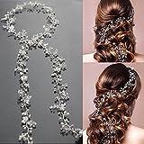 Strassbesatz Haarband Kristall Stirnband, 1M Kopfschmuck Haarbänder Hochzeits Schmuck mit Blumen-Ranke und Strass Fashion Zubehör für Frauen und Mädchen Braut und Brautjungfern (Silber)