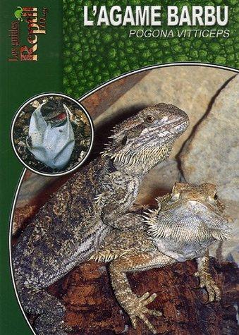 L'Agame Barbu: Pogona Vitticeps par Andree Hauschild