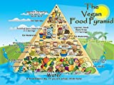 The Museum Outlet charts of - Vegan Food Pyramid - A3 Poster Print by The Museum Outlet