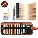 Best Books On Sketching In Pencils - Sketching Pencil Set, 29 Pieces Drawing Pencil Sketch Review