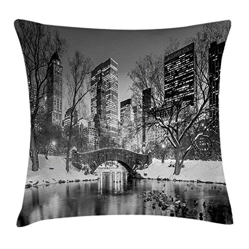 Landscape Throw Pillow Cushion Cover, Cityscape New York City in Winter Central Park Snowy Buildings Photo Art, Decorative Square Accent Pillow Case, 18 X 18 inches, Grey and Dimgrey New York Satin Bow
