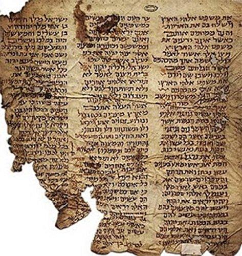 Couverture du livre Le Livre du Commencement: Traduction de Fabre d'Olivet, retravaillé par l'auteur (Textes bibliques revisités t. 1)