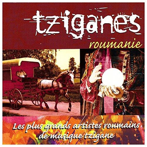 Tziganes Roumanie (Les plus grands artistes roumains de musique tzigane)