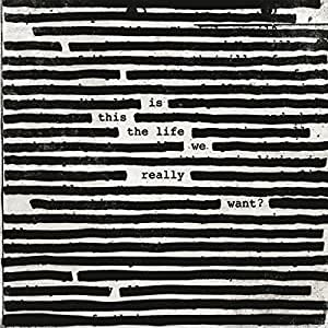 Is This The Life We Really Want? [2 LP]