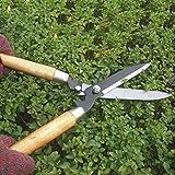 FairytaleMM Professionelle Gartenscheren Heckenschere Clippers mit Langen Holzgriff für Gartenscheren Shimming Shaping, Holz Farbe & schwarz