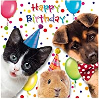 'SUSY CARD 40010618 Guinea Pig Birthday Greeting Card – Dog + Cat – Dimensions: 15 x 0.2 cm