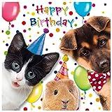 Susy Card 40010618 Geburtstagskarte