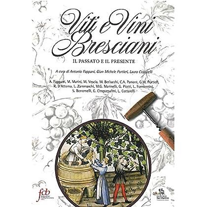 Viti E Vini Bresciani. Il Passato E Il Presente