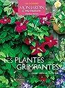 Les plantes grimpantes par Adeline