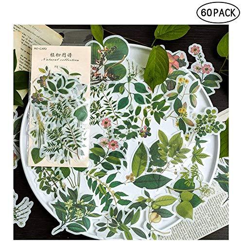 Vintage Ephemera Pack,Pflanzen Floral Stil Dekoration Aufkleber,Papier Stash Card Lager Scrapbook/Briefe/Notebook/Kartenherstellung 60 Teile/Satz -