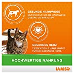 IAMS Adult Cat Lamb 14
