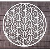 Wand-Deko Blume des Lebens ø 44 cm aus Edelstahl | Wand-Schmuck Lebensblume Wand-Dekoration Spirituelles Symbol | Esoterik Geschenke günstig kaufen
