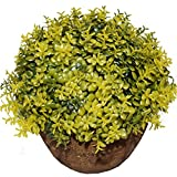 Fourwalls Artificial Topiary Plant in a Ceramic Pot (12 cm, Yellow, ABT A8/110/1185/Yellow)