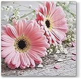 20 Servietten Rosa Gerberas / Sommer / Blumen / Herzen 33x33cm