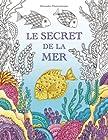 Le secret de la mer - Cherche les trésors du bateau qui a sombré. Un livre de coloriage qui promet découverte et détente.