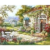 Shukqueen DIY Erwachsenen Öl-Gemälde, Malen nach Zahlen Kits, painting-flower Acryl, 15x 20cm, Framed Canvas