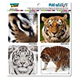 Graphics and More Tigers Artistic Mag-Neato's Automotive Car Refrigerator Locker Vinyl Magnet Set