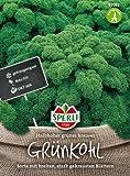 Sperli Grünkohl Halbhoher grüner krauser