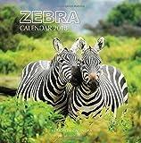 Zebra Calendar 2018: 16 Month Calendar