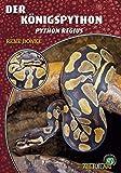 Der Königspython: Python regius (Art für Art)