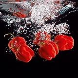 Eurographics DG-OG1104 Deco Glass, Glasbild, Pepper Splash, 30 x 30 cm