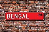 Aersing Amateur de Bengale Sign du Bengale Chats Décor du Bengale détenteur Panneau Décoration Murale Cadeau décoratifs Plaque Post Plaque de Rue 45x 10cm
