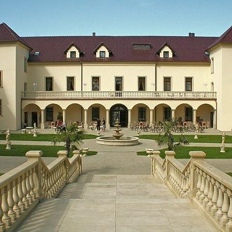 Schein da viaggio buono 6giorni nel Castello Hotel kamenny dvur nella foresta Kaiser Repubblica